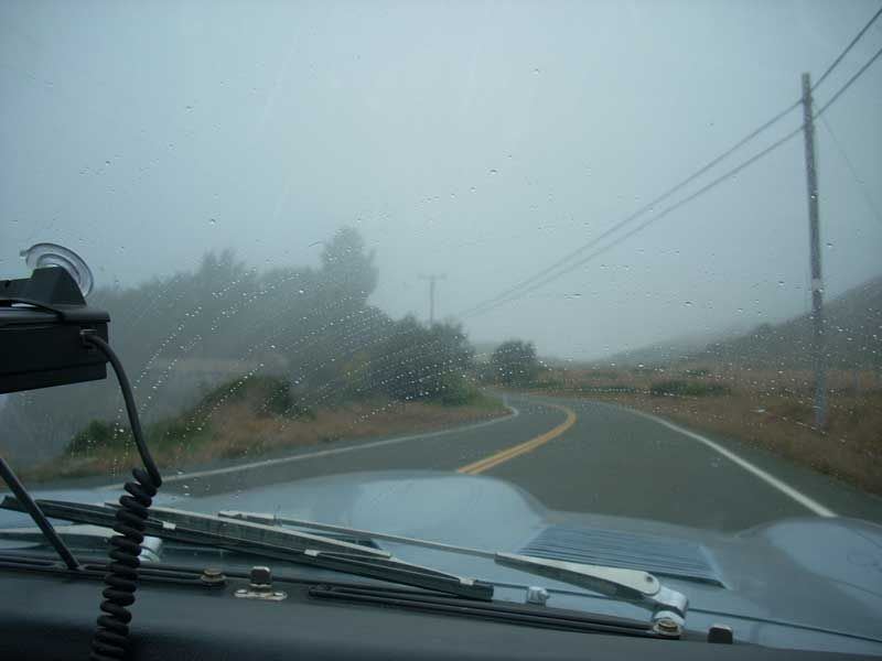 No, not rain... just thick, wet fog.