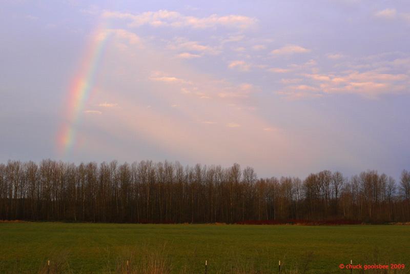 5. Stillaguamish Rainbow.