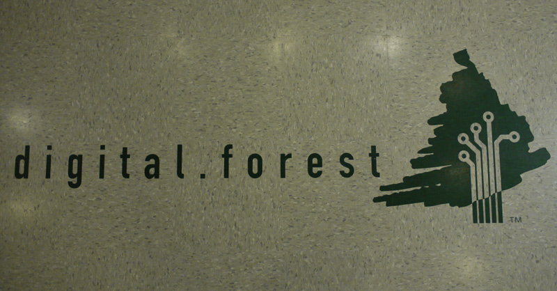 The digital.forest logotype