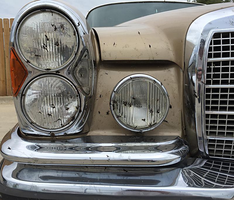 Classic Motor Cars Lubbock